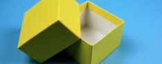 Geschenkbox 13,6x13,6x5 cm